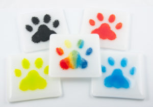 paws-coasters
